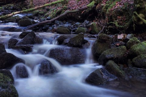 Swallow Falls Feb 18 | Featured Image | thefrozendivide