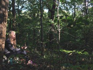 Clocaenog Forest | October 2018 | thefrozendivide 01