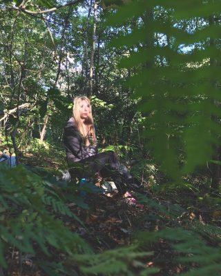 Clocaenog Forest | October 2018 | thefrozendivide 02