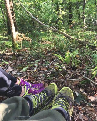 Clocaenog Forest | October 2018 | thefrozendivide 03