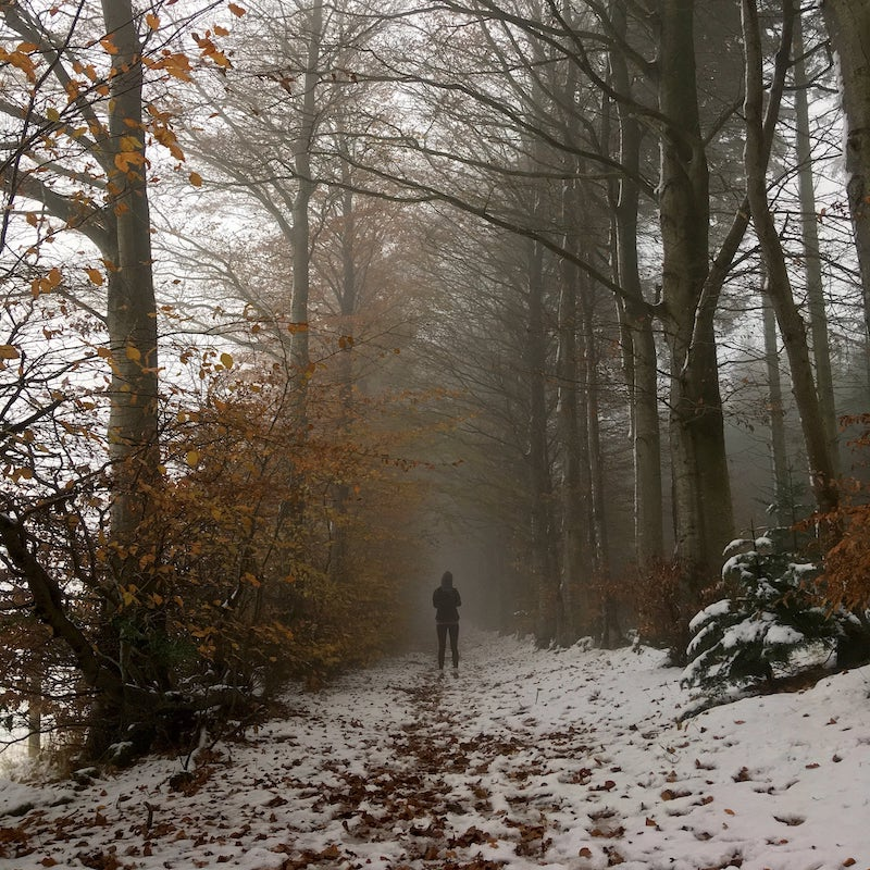 Clocaenog Forest Hiking & Running Trail Routes by The Frozen Divide