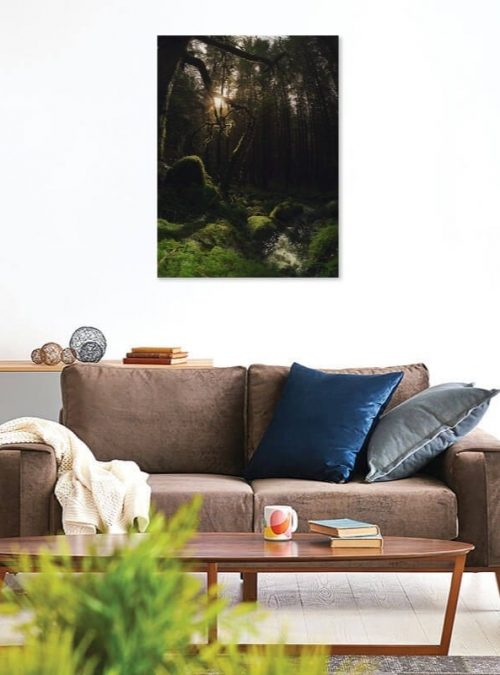 Forest Sunlight Canvas Print Interior Setting