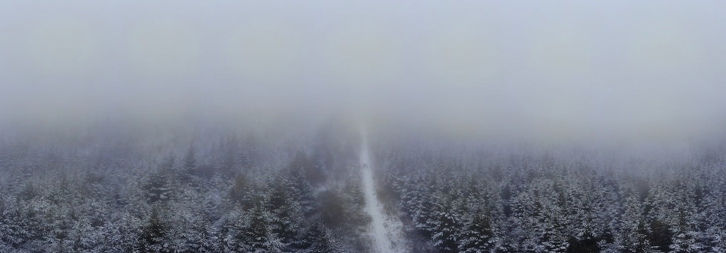 Clocaenog Forest Mist Panoramic | The Frozen Divide