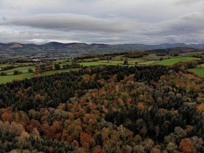 Clocaenog Forest taken on DJI Mavic Air