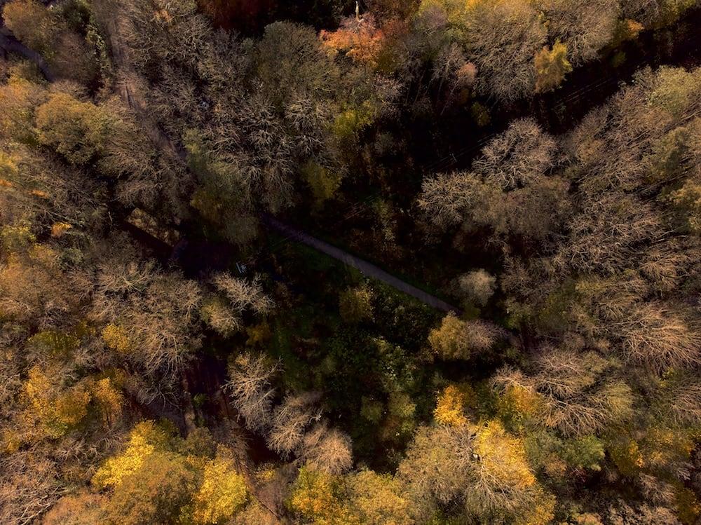 Loggerheads Path | The Frozen Divide